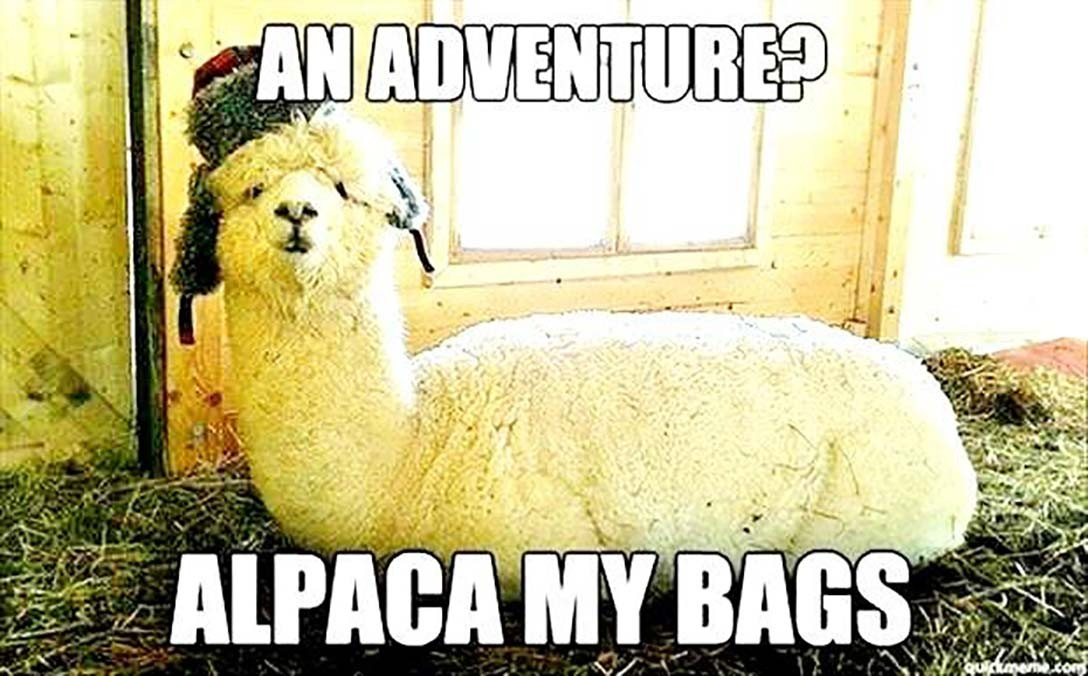 Adventure? Alpaca My Bags!